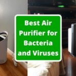 Best Air Purifier for Bacteria and Viruses