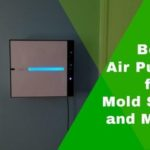 Best Air Purifiers for Mold Spores and Mildew