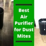 Best Air Purifier for Dust Mites
