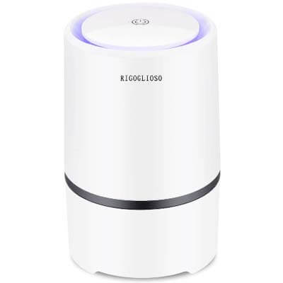 RIGOGLIOSO Portable HEPA Air Purifier for Home