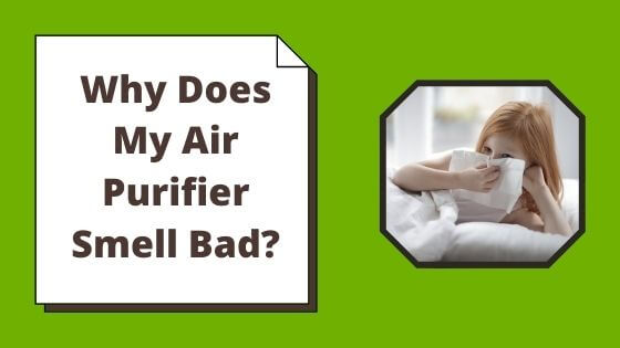why does my air purifier smell bad
